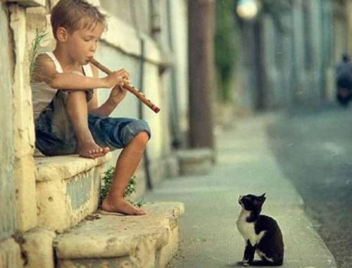 Benefícios da música para a qualidade de vida