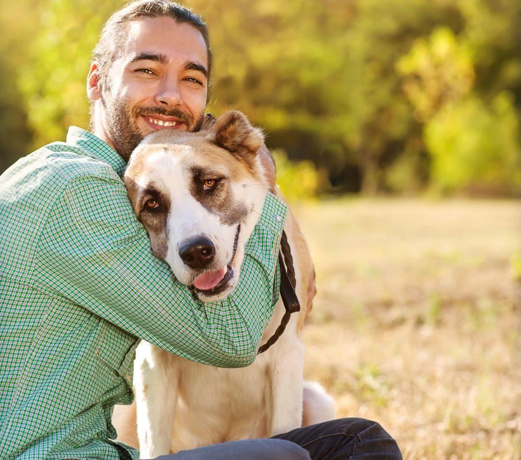 Animais de estimação melhoram a nossa qualidade de vida