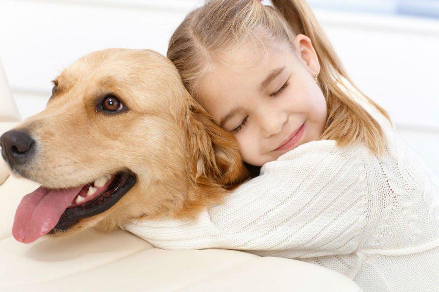 Animais de estimação promovem a melhoria da saúde