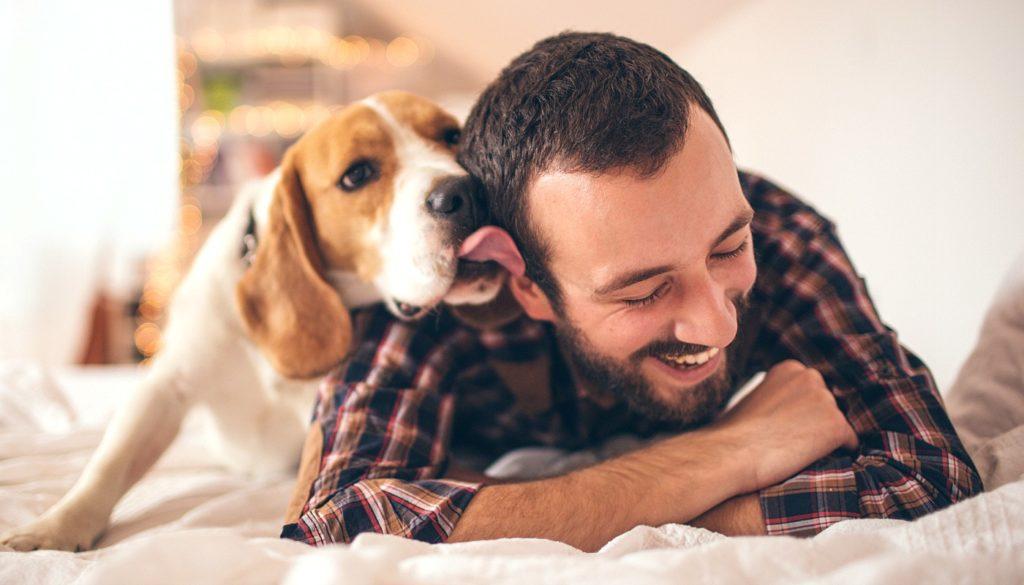 Animais de estimação nos ajudam a ter mais felicidade