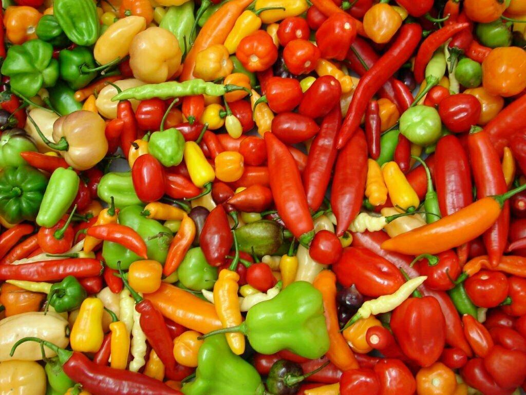 Qualidade de vida - pimentas